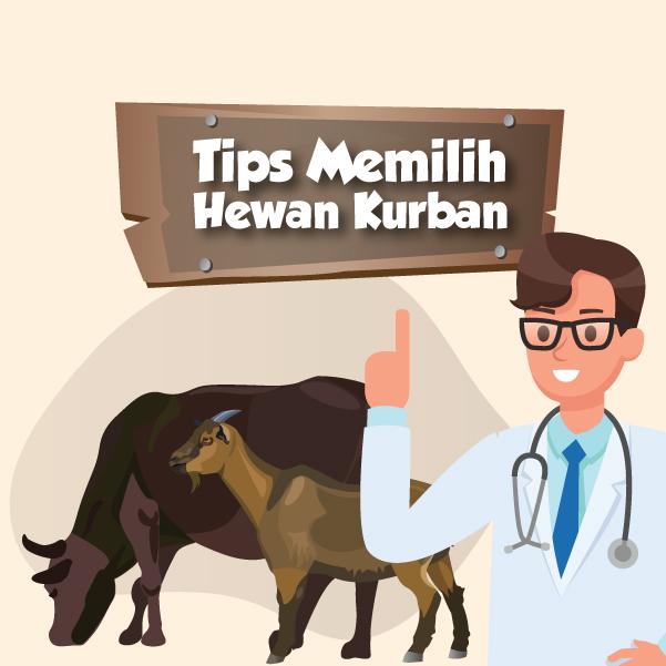 Tips Memilih Hewan Kurban-inf