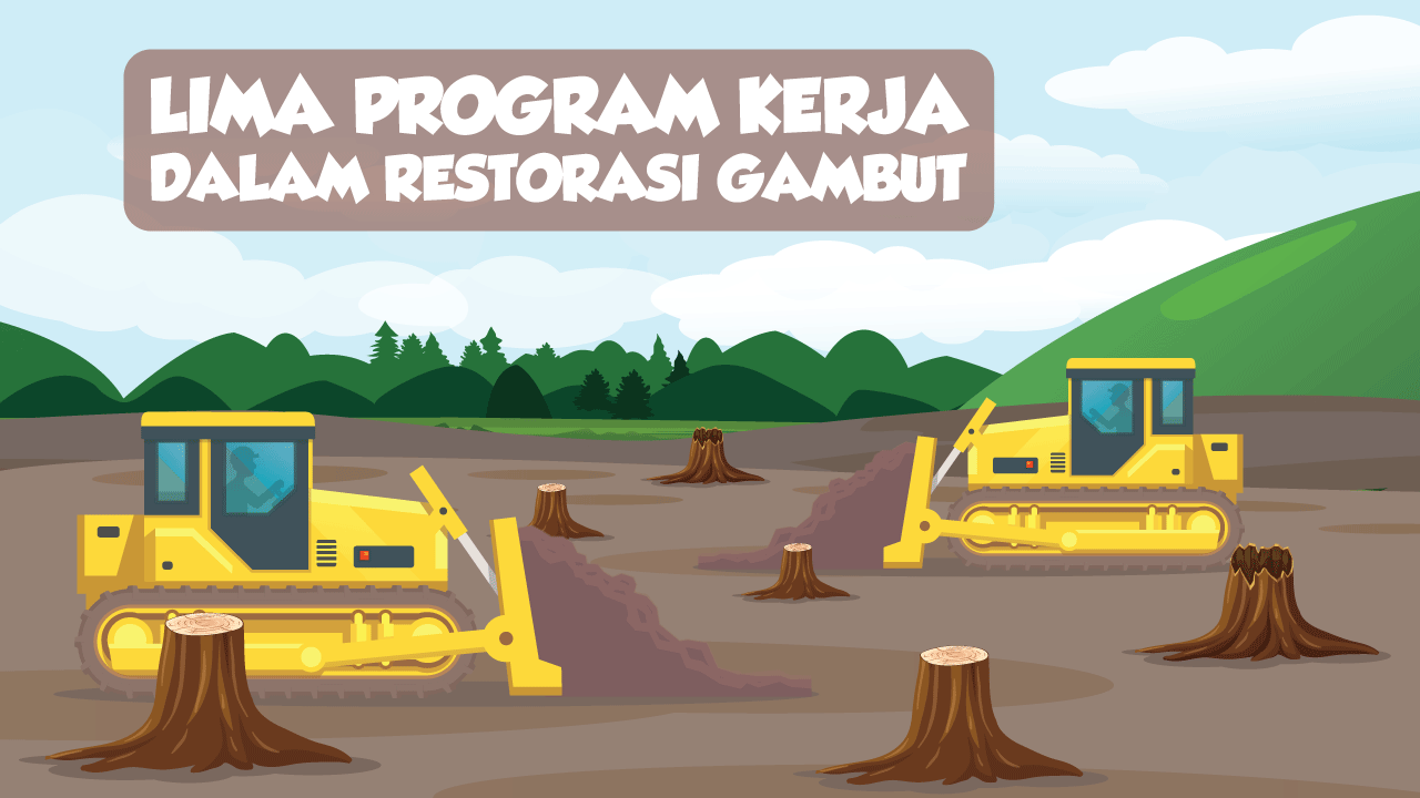 Lima Program Kerja dalam Restorasi Gambut-thum